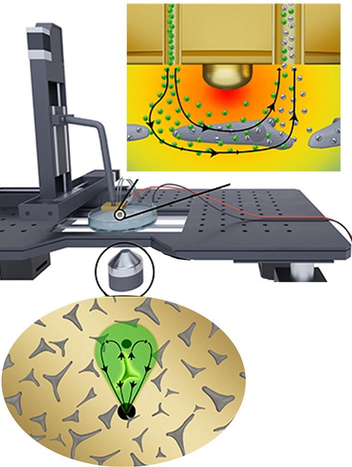 باحثون في جامعة نيويورك أبوظبي يطوّرون مسباراً غير تلامسي لتحليل الخلايا المفردة ضمن الأورام